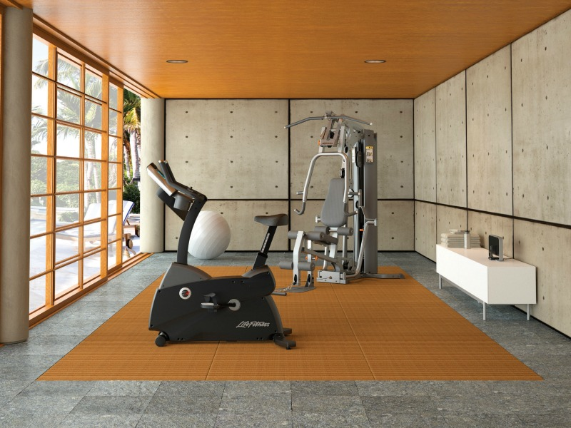 Gs fixed motion home gym life fitness